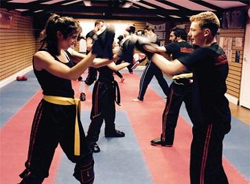 Holistic - Fitness Sport Martial Arts